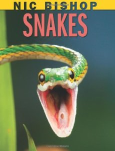 Nic Bishop's Snakes