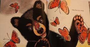 """Baby Bear sees orange."""