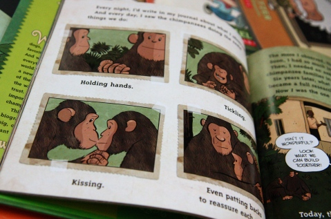 """I am Jane Goodall"" by Brad Meltzer & Christopher Eliopoulos"